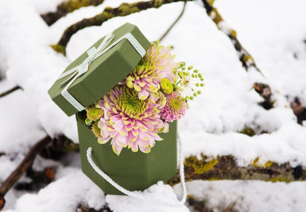 chryzantemy flower box