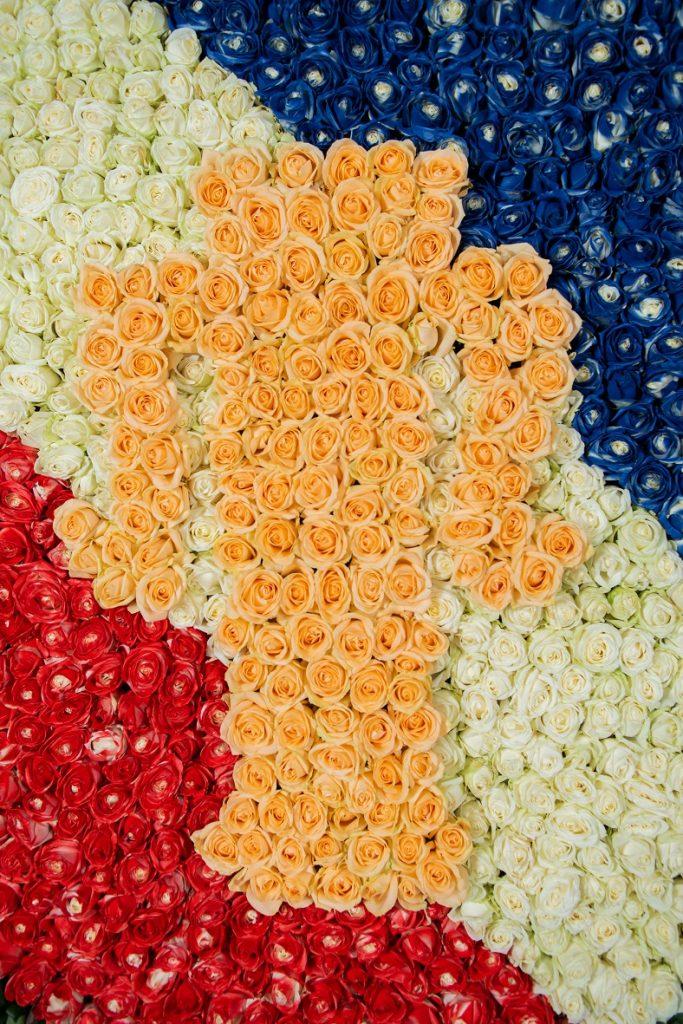 Herb-Wazów-z-1-500-róż-Avalanche-fot.-Olga-Borowska-683x1024